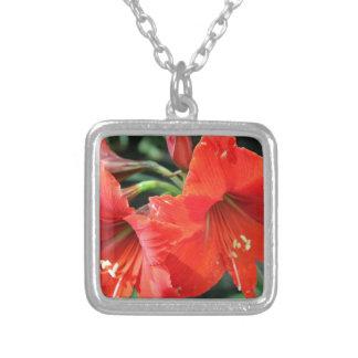Colar Banhado A Prata Fotografia vermelha bonita da flor