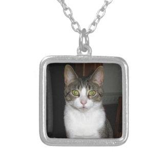 Colar Banhado A Prata Gato de gato malhado com os olhos verdes grandes