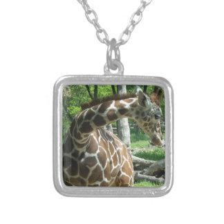 Colar Banhado A Prata Girafa gracioso