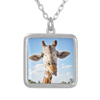 Colar Banhado A Prata Girafa parvo