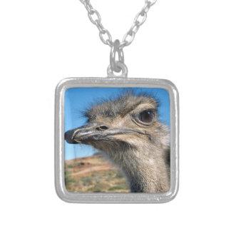 Colar Banhado A Prata Harry a avestruz feliz