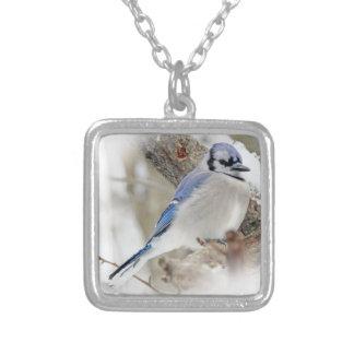 Colar Banhado A Prata Jay azul na neve do inverno