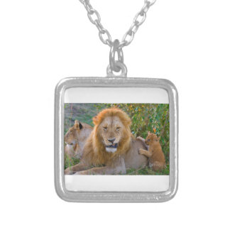 Colar Banhado A Prata Leão Cub bonito que joga com pai, Kenya