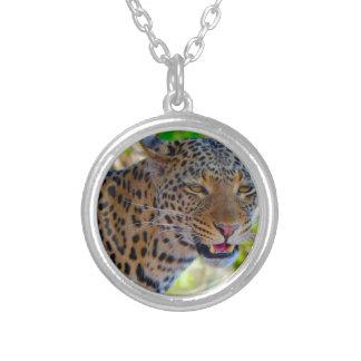 Colar Banhado A Prata Leopardo manchado