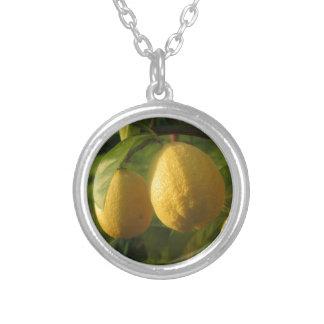 Colar Banhado A Prata Limões amarelos que crescem na árvore no por do
