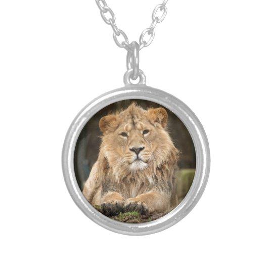 COLAR BANHADO A PRATA LION
