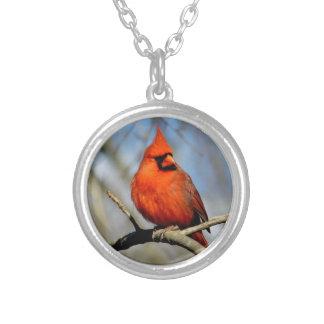 Colar Banhado A Prata Locket cardinal vermelho da crista
