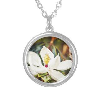 Colar Banhado A Prata Magnólia na flor