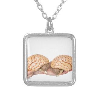 Colar Banhado A Prata Mãos que guardaram o cérebro humano modelo no