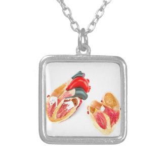Colar Banhado A Prata Modelo humano do coração isolado no fundo branco