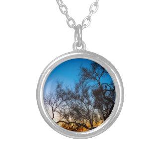 Colar Banhado A Prata Nascer do sol da silhueta da árvore de Palo Verde