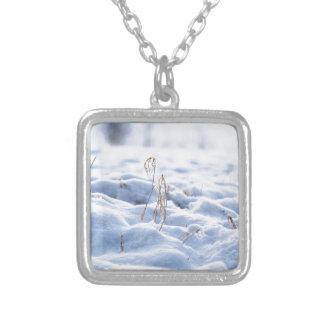 Colar Banhado A Prata Neve em um prado no macro do inverno