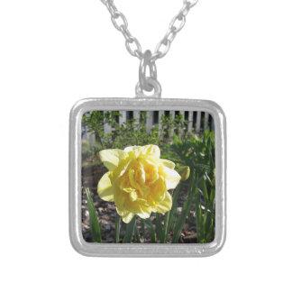 Colar Banhado A Prata O Daffodil bonito