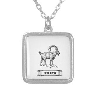 Colar Banhado A Prata onda do rico do íbex