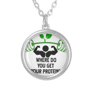 Colar Banhado A Prata Onde você obtem sua proteína