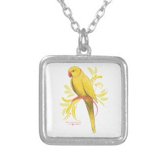 Colar Banhado A Prata Papagaio amarelo de Ringneck do indiano