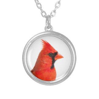 Colar Banhado A Prata Pássaro cardinal