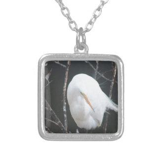Colar Banhado A Prata Pássaro de FB_IMG_1481504110273 (1) Florida