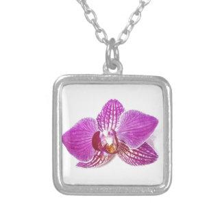 Colar Banhado A Prata Pintura floral do aquarel do phalaenopsis do Lilac