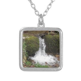 Colar Banhado A Prata Pouca cachoeira por rochas mossy na floresta