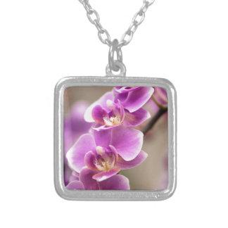 Colar Banhado A Prata Profundamente - corrente de flor cor-de-rosa da