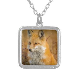 Colar Banhado A Prata raposa