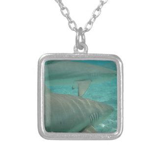 Colar Banhado A Prata shark