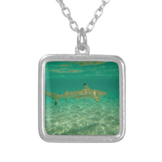Colar Banhado A Prata Shark in bora bora