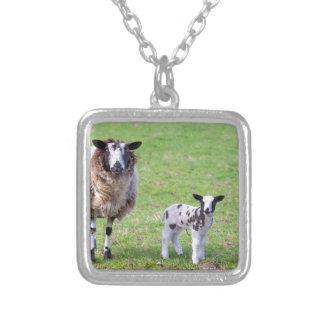 Colar Banhado A Prata Sira de mãe a carneiros com os dois cordeiros