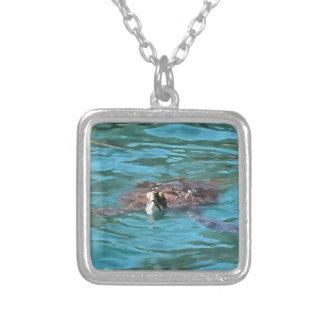 Colar Banhado A Prata Tartaruga de mar da boba