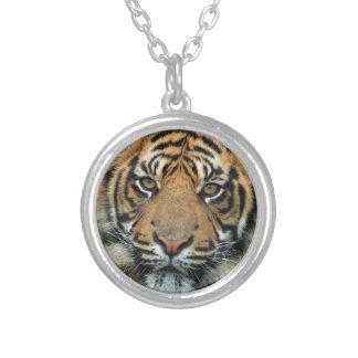Colar Banhado A Prata Tigre adulto