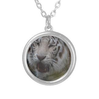 Colar Banhado A Prata Tigre branco