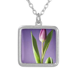 Colar Banhado A Prata Tulipa roxa no dia dos namorados brilhante do