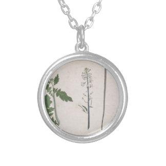 Colar Banhado A Prata Uma planta de rabanete, uma semente, e uma flor