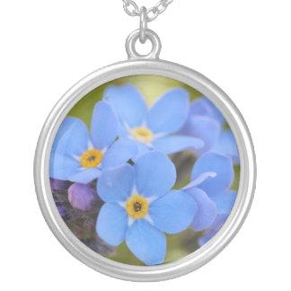 Colar bonita da flor do miosótis