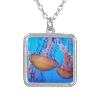 Colar bonita das medusa