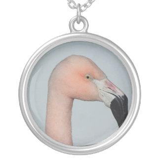 Colar bonito do flamingo