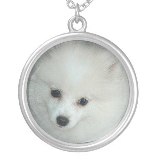 Colar branca de Pomeranian da prata esterlina