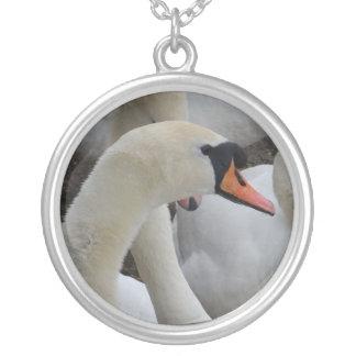 Colar chapeada da cisne prata branca