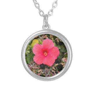 Colar cor-de-rosa da flor