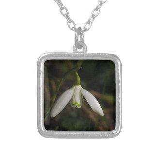 Colar da flor de Snowdrop