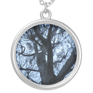 Colar da fotografia da silhueta da árvore
