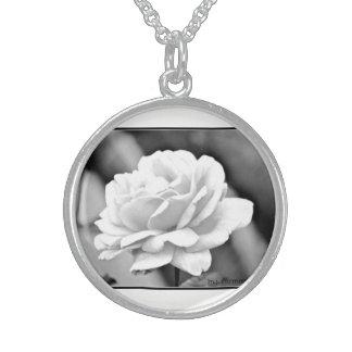 Colar da prata esterlina de rosa branco