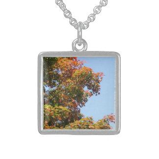 Colar De Prata Esterlina Árvore de bordo bonito do outono