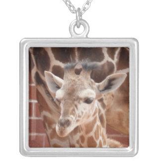 Colar do girafa do bebê da maquineta