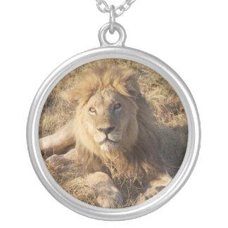 Colar do leão