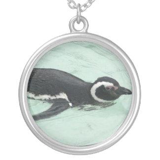 Colar do pinguim da natação