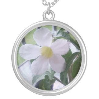 Colar feminino da imagem bonito da flor branca