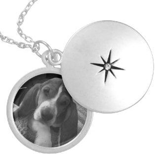 Colar Medalhão Filhote de cachorro do Basset