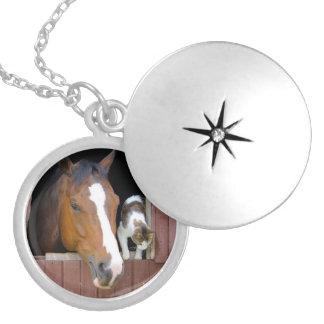 Colar Medalhão Gato e cavalo - rancho do cavalo - amantes do